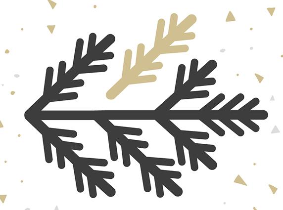 Wie viele Spitzen hat ein Weihnachtsbaum? Ist er wirklich so voluminös wie auf den Bildern?